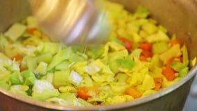 Kochen Gemüseteller sabzi stock video