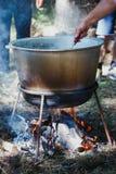 Kochen im Freien in einer Schüssel Edelstahl über einem brennenden Feuer Lizenzfreie Stockfotos