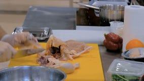 Kochen Sie Ausschnitth?hnerfleisch mit Messer stock footage