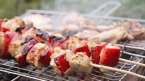 Kochen von Aufsteckspindeln und von Grill in der Natur stock footage