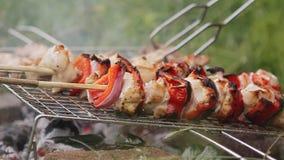 Kochen von Aufsteckspindeln und von Grill in der Natur stock video