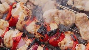 Kochen von Aufsteckspindeln und von Grill in der Natur stock video footage