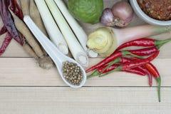 Kochen von Bestandteilen, thailändische kochende Bestandteile, würzig Stockfotografie