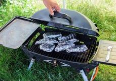 Kochen von Fischen in der Folie auf Grill Stockfoto