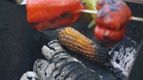 Kochen von Mais auf Feuer stock video