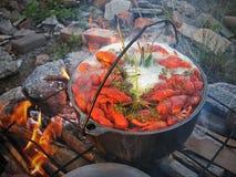 Kochen von Panzerkrebsen im wilden über dem Feuer Lizenzfreie Stockfotos