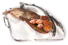 Kochen von Recepies Lizenzfreies Stockfoto