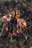 Kochen von Würsten auf Stock über Lagerfeuer Stockfoto