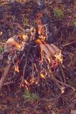 Kochen von Würsten auf Stock über Lagerfeuer Lizenzfreie Stockfotografie
