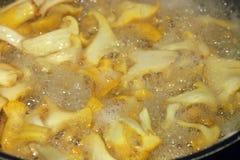 Kochend vermehren sich Scheiben von Pfifferlingen, ein genauer Blick, Blasen des Olivenöls und Wasser über den Scheiben explosion stockbilder