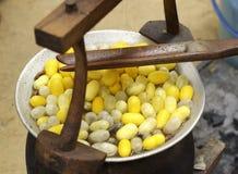 Kochender Kokon in einem Potenziometer, zum einer Kokonseide vorzubereiten Stockfotos