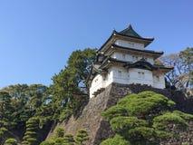 Kochi, Japão - 26 de março de 2015: Vista geral do castelo de Kochi dentro Imagem de Stock Royalty Free