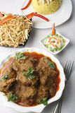 Kochi Panther curry or mutton curry from bengal Stock Photography