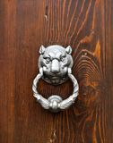 Koci kierowniczy drzwiowy knocker zdjęcia royalty free