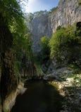 Škocjan Caves Royalty Free Stock Photo