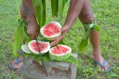 Kocköbon klipper vattenmelon med den långa skarpa kniven i Rarotonga Royaltyfri Foto