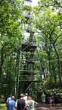Kock Forest Fire Tower Royaltyfri Foto