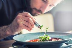 Kock i hotell- eller restaurangkökmatlagning, endast händer Han arbetar på mikroörtgarneringen Förbereda tomatsoppa Royaltyfri Bild