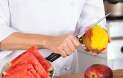 Kock med frukter Fotografering för Bildbyråer
