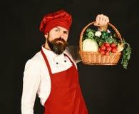 Kock med kål, rädisan, peppar och grönsallat Kocken med den allvarliga framsidan i den burgundy likformign rymmer grönsaker Royaltyfria Foton
