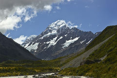 mt New Zealand Royaltyfri Bild