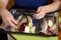 Kock som gör mackerelen med cranberries Arkivbild