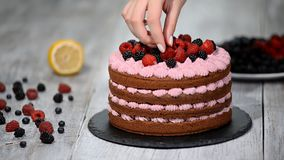 Kocken dekorerar kakan med bär lager videofilmer