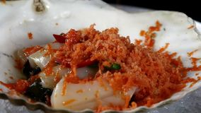 Kocken förbereder havssallad av kammusslor på skal lager videofilmer