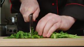 Kocken klipper en persilja på en skärbräda i ett kök stock video