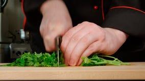 Kocken klipper en persilja på en skärbräda i ett kök Royaltyfri Bild