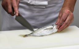 Kocken klipper fisken in i stycken av sushi (1) Arkivfoton