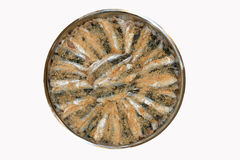 kockfisk som är klar till Fotografering för Bildbyråer