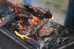 Kockkött på steknålar Manhandvänd grillade kött på mangal Laga mat picknickmat Arkivfoto