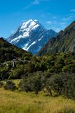kockmontering New Zealand Arkivbild