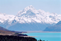 kockmontering New Zealand Royaltyfri Bild