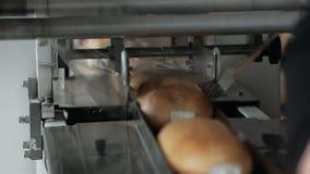 Kocowanie linii chleb w folii zdjęcie wideo