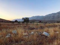 Koczowniczy obszar trawiasty zdjęcie royalty free