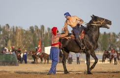 Koczowników mężczyzna po zapaśniczego dopasowania na horseback, nieudacznik gratuluje zwycięzcy obrazy stock