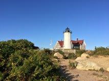Kod New England för udde för fyrlocktorsk Royaltyfria Bilder