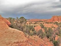 Kodachrome国家公园红色岩石  免版税库存图片
