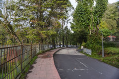 Kodaikanal jeziora droga Zdjęcie Stock