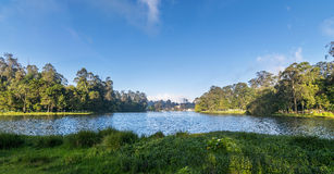 Kodaikanal Lake Panorama (Princess of Hill stations), Tamil Nadu. The star shaped Kodaikanal Lake, also known as Kodai Lake is a man-made lake located in the Stock Photography