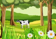 Koe in de groene weide, platteland vector illustratie