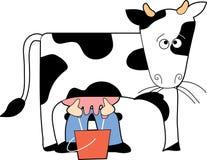 Koe die wordt gemolken Royalty-vrije Stock Afbeelding