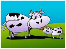 Koe en kalf Stock Afbeeldingen