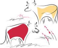 Koe en stier Stock Fotografie