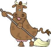 Koe gebruikend een zwabber Stock Foto's