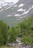 Koednitz dal i österrikaren Tyrol Fotografering för Bildbyråer