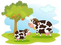 2 koeien stock illustratie