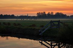 Koeien die in het Nederlandse platteland als zonreeksen weiden op een nevelige de herfstavond stock fotografie